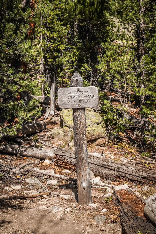 Colorado-58