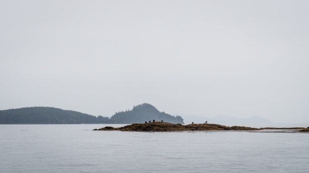 Alaska fishing-171